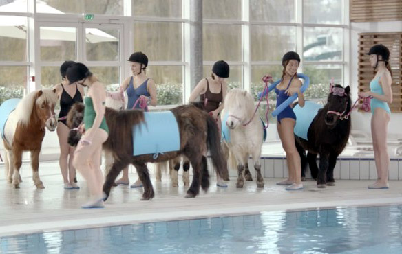 poney aquatique
