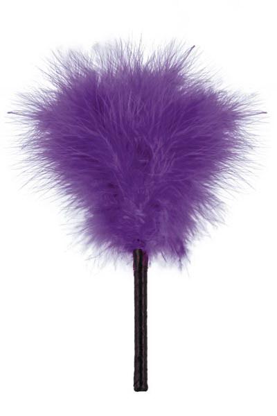 plumeau coquin violet