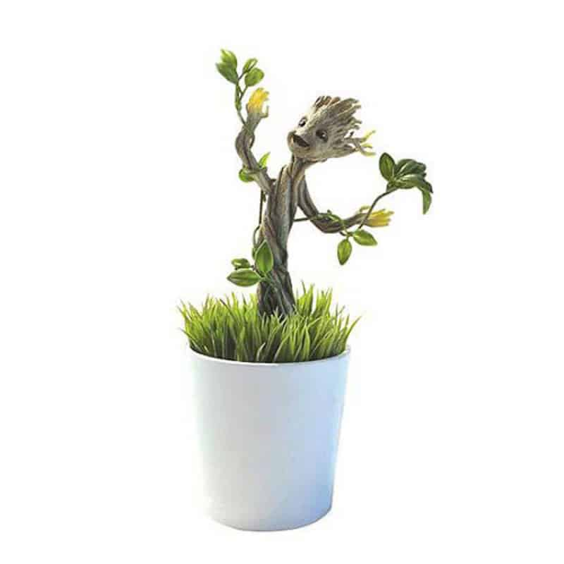 Plante groot lumineux