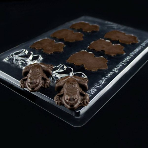 moule-chocolat-chocogrenouille-harry-potter (2)