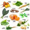 coffret-12-legumes-insolites-a-faire-pousser (1)