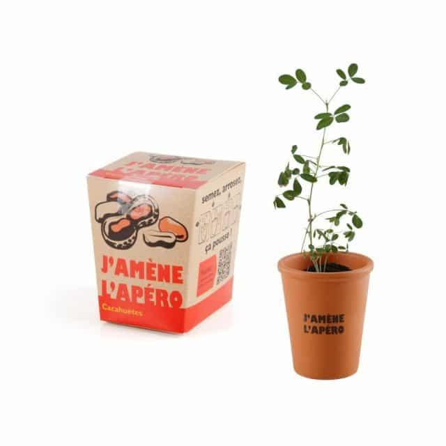 kit cadeau cacahuete à faire pousser apéro