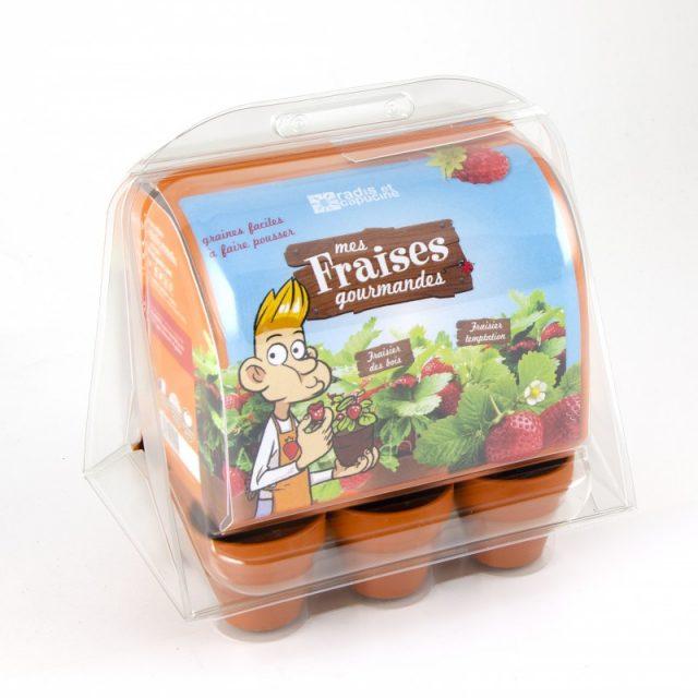 mini serre fraisiers à faire pousser