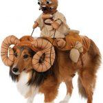 deguisement chien star wars bantha
