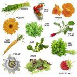 coffret-jardiner-lune (3)
