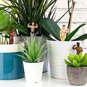 figurine homme musclés plante