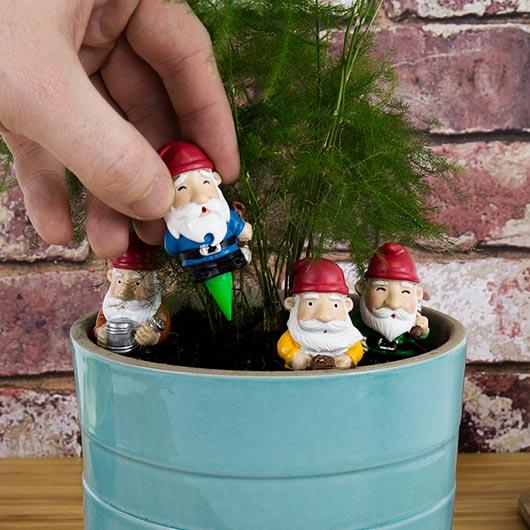nains de jardin pot de plante