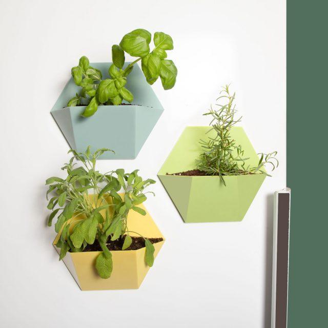 pot plante magnetique frigo